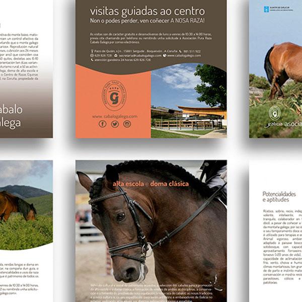 vilaso-editorial_1-detalle
